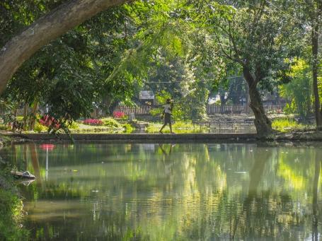 Birmanie_parc Hsipaw
