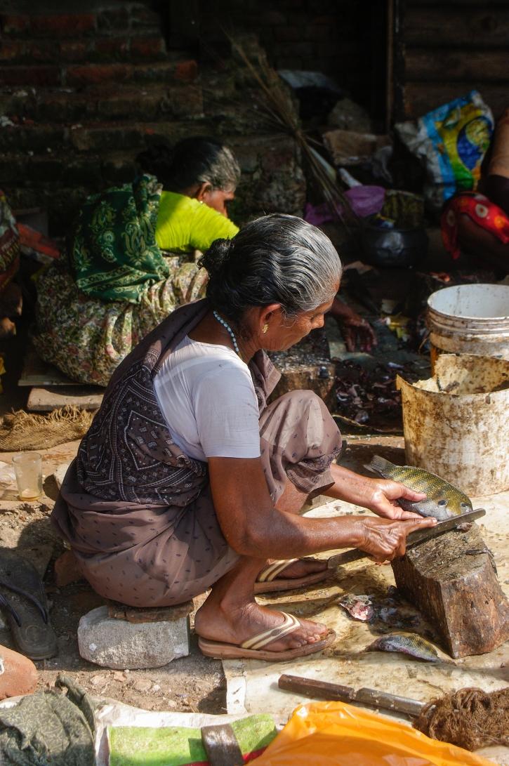 Inde_Kerala fish market lady