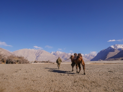 Nubra desert, man and camel1