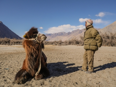 Nubra desert, man and camel2
